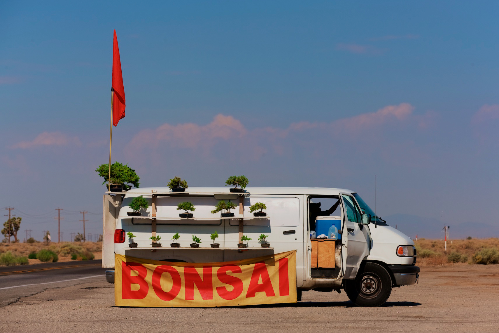 Roadside Bonsai, Bakersfield, CA